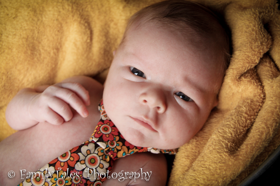 Newborn Photographer PA