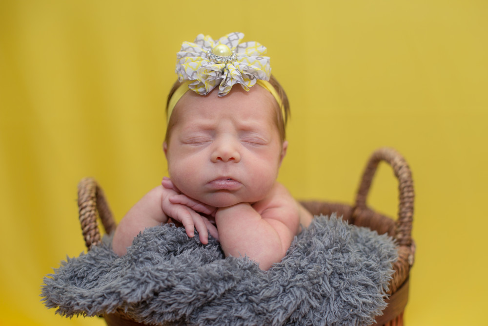 Newborn Photography :: Mount Joy
